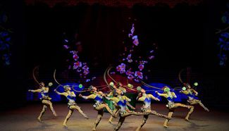 Chinese acrobats perform at China-South Africa Hand in Hand Gala