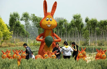 Straw art gala held in E China's Shandong
