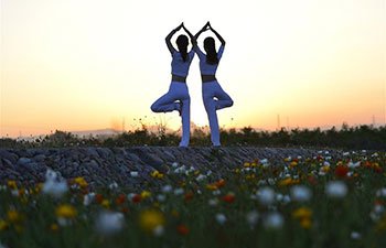 Yoga fans practise yoga on flower farmland in N China's Hebei
