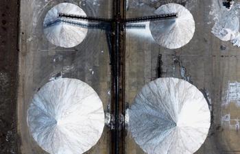 Daqinghe salt flat in N China expecting good year