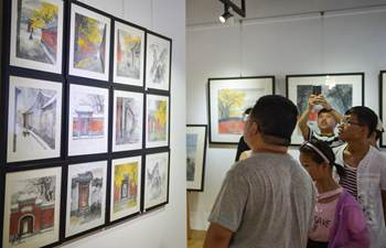 Beijing Literature and Art Exhibition attracts visitors