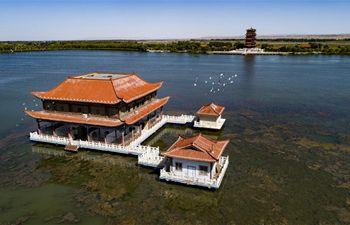 Scenery of Heihe River wetland in NW China's Gansu