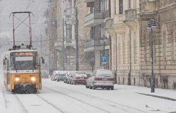 Heavy snowfalls disrupt air, road traffic in Hungary