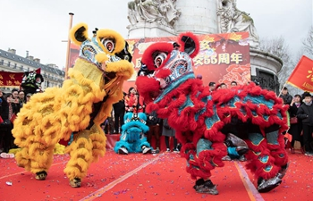 Chinese Lunar New Year celebrated in Paris