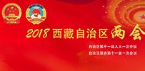 2018年西藏自治區兩會專題