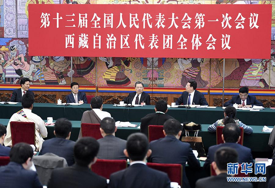 趙樂際參加西藏代表團審議