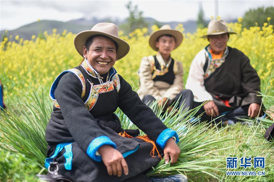 (新華全媒頭條)闊步走在新時代康莊大道上——以習近平同志為核心的黨中央關心西藏工作紀實