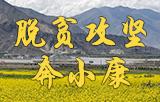 脫貧攻堅奔小康——西藏進行時