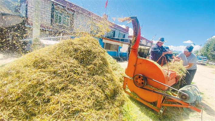 科技助農促增産