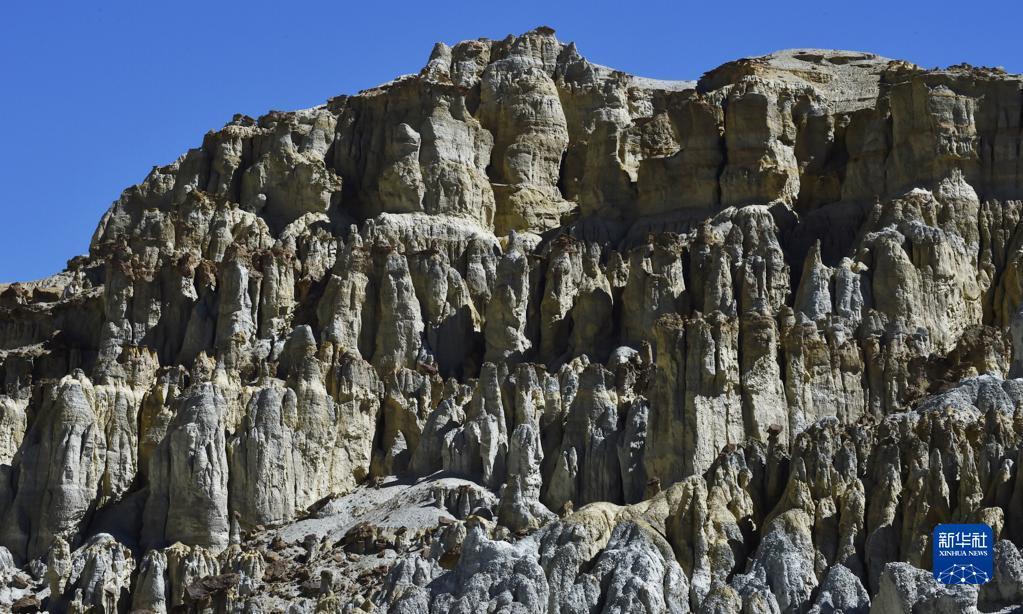 奇特的札達香孜土林(圖)
