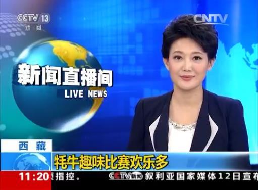 西藏:牦牛趣味比賽歡樂多
