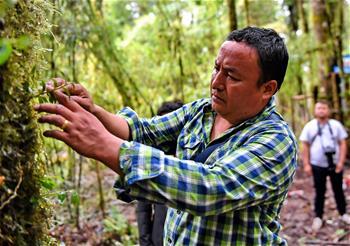 墨脱:产业扶贫带头人次旦扎西