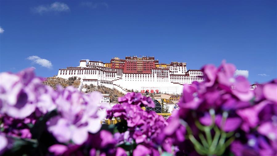 """西藏實行特殊優惠力推""""冬遊西藏"""""""