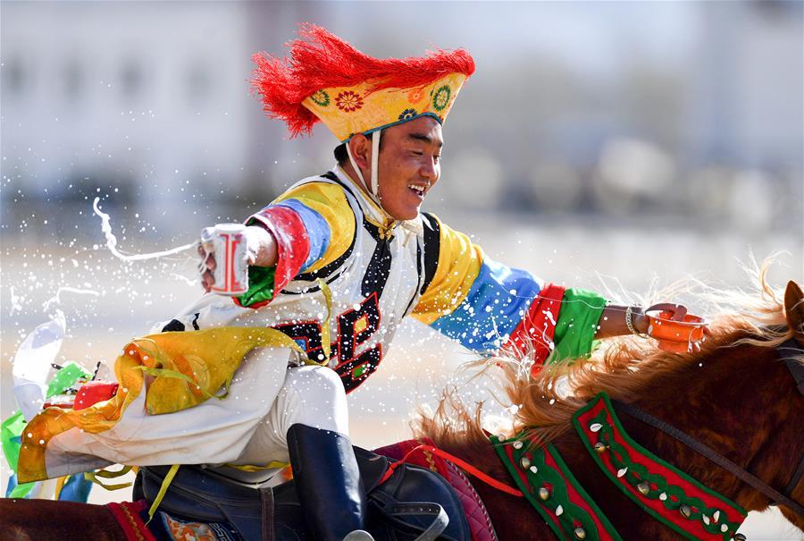 民族體育——傳統馬術表演慶藏歷新年