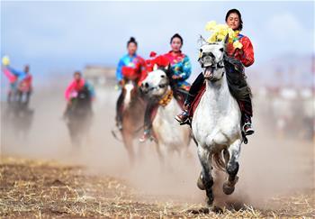 鄉村馬術表演 把歡樂帶到西藏田間地頭