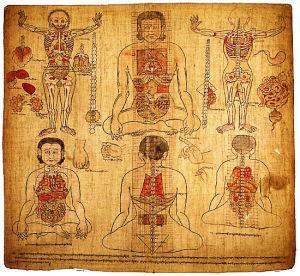藏醫保健小知識