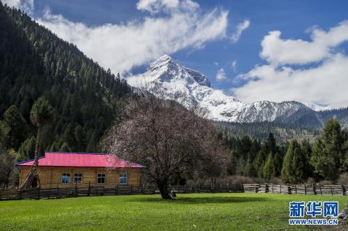 西藏第六環境保護督察組正式進駐林芝開展督察
