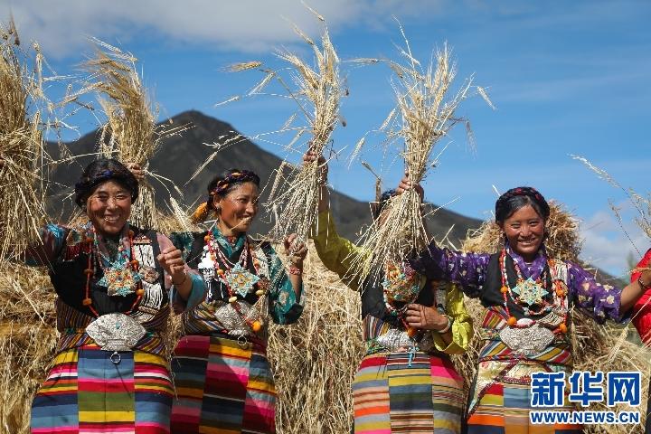 愛心機井助力西藏鄉村農田灌溉(圖)