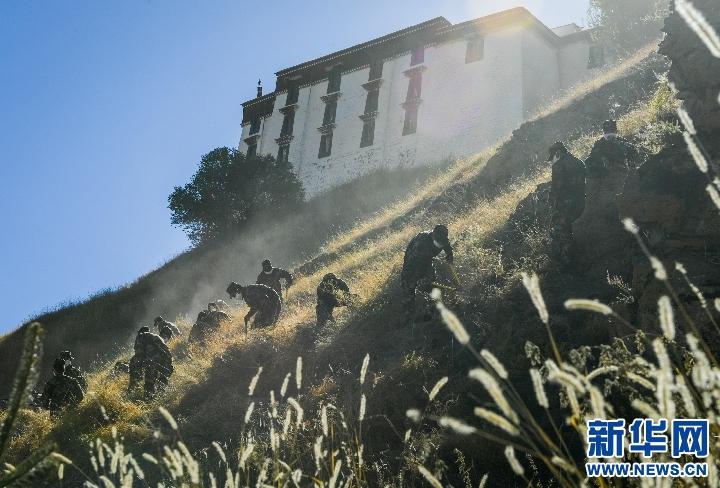 西藏布達拉宮開展除草防火行動