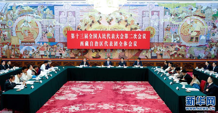 【聚焦兩會】西藏代表團全體會議向媒體開放(圖)