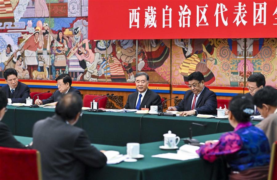 【聚焦兩會】汪洋參加西藏代表團審議(圖)