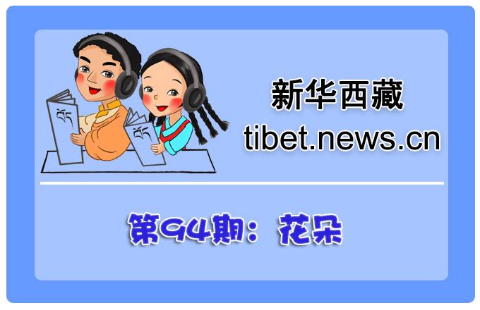 藏語小百科94期:花朵(微視頻)