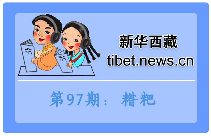 藏語小百科97期:糌粑(微視頻)