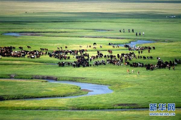 【微視頻】走進縣區:西藏措美縣 哲古草原美如畫