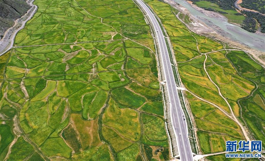 西藏:拉林公路秋色美(圖)