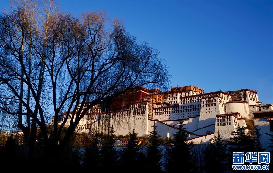 """""""格桑花""""赴藏支教隊:我們給藏族同胞送去""""格桑"""""""