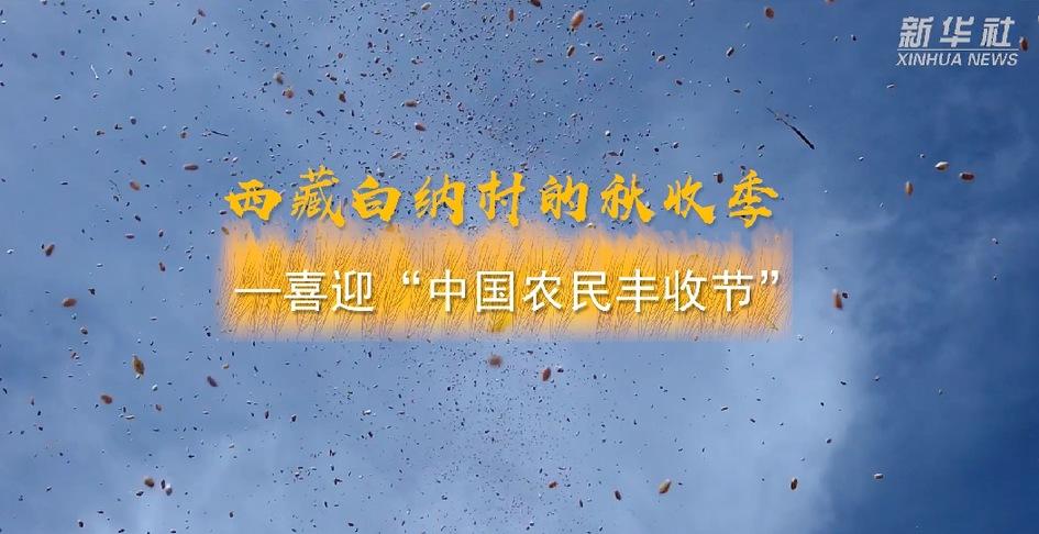 """【微視頻】西藏白納村的秋收季——喜迎""""中國農民豐收節"""""""