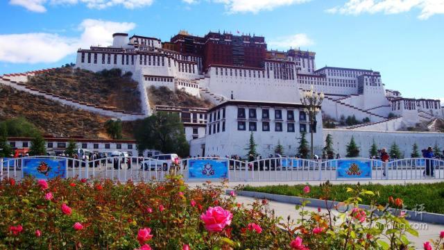 西藏讓農牧民腰包鼓起來