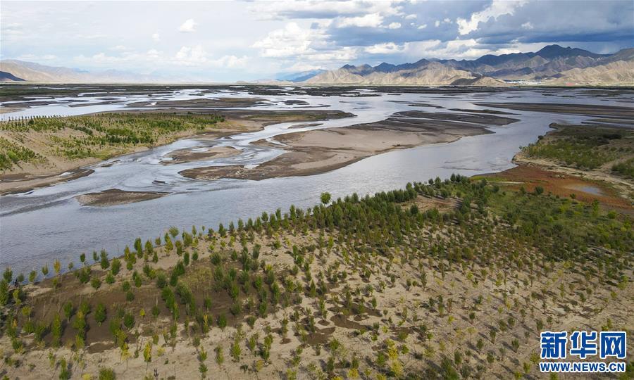 西藏日喀則市桑珠孜區加大造林綠化力度 成效明顯(圖)