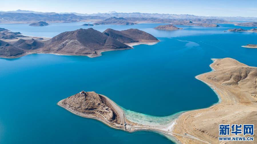 西藏:冬日羊湖 動物樂園(圖)